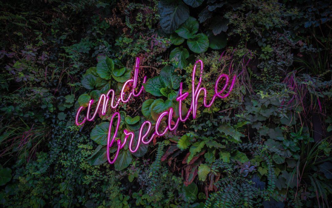 Prevenir, curar y respirar